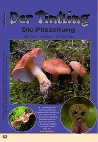 Titelblatt Tintling 62 (1/2010)