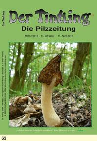 Titelblatt Tintling 63 (2/2010)