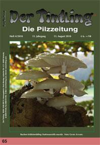 Titelblatt Tintling 65, 4/2010