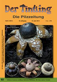 Titelblatt Tintling 82