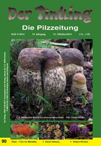 Umschlag Tintling 90 mit dem Hainbuchenröhrling Leccinum pseudoscabrum