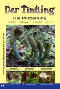 Tintling 93 mit dem Graugrünen Erdzunge Microglossum griseoviride