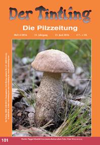Umschlag Tintling 101 mit dem Harten Pappel-Raufuß Leccinum duriusculum