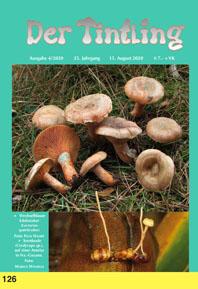 Titelblatt Tintling 126