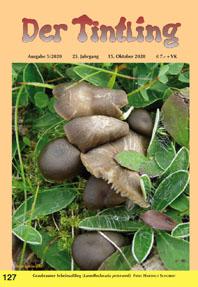 Titelblatt Tintling 127