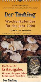 Pilze bei Eichen