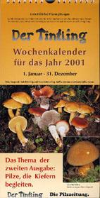 Kalender 2001 Pilze bei Kiefern