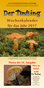 Traditioneller Themenkalender 2017 Pilze im Nadelwald