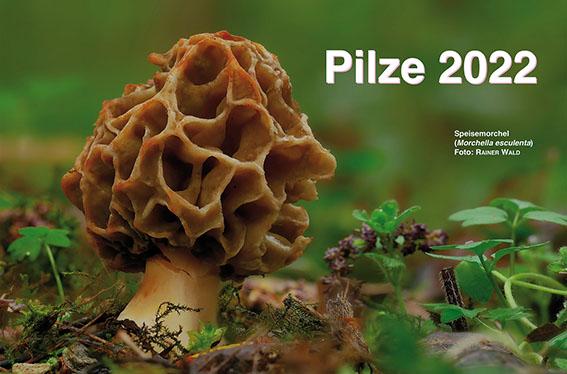 Pilze 2022. Wochenkalender